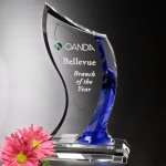 Potomac Indigo Award Achievement Awards