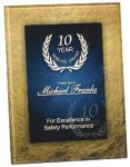Gold & Blue Acrylic Art Plaque Award Achievement Awards