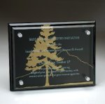 Black Glass Plaque with Glass Layer Achievement Awards