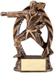 Bronze and Gold Award -Karate Male Bronze and Gold Star Resin Trophy Awards