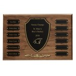 Cast Bronze Trim Perpetual Plaque Fire and Safety Awards