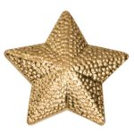 Gold Star Metal Chenille Letter Insignia Lapel Pins
