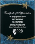Blue Marble Shooting Star Acrylic Award Recognition Plaque Marble Awards