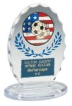 Clear & Blue Standing Oval Sculpted Ice Award Sculpted Ice Awards